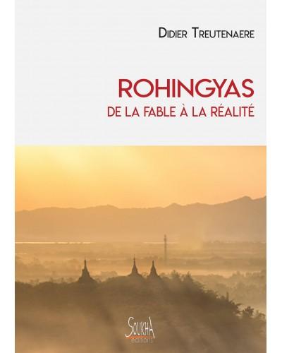 Didier Treutenaere - Boudddhisme et re-naissances